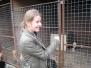 Išvyka į Marijampolės rajone esančią benamių gyvūnų prieglaudą