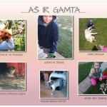 AS-R-GAMTA
